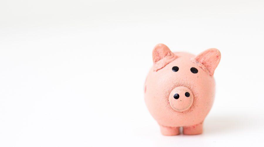 Sparschwein Kosten der Strafverteidigung